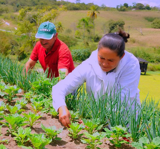agricultura-familiar-governo