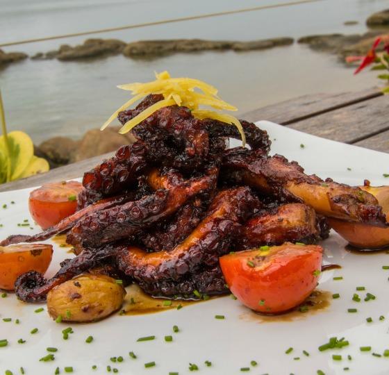 polvo blog gastronomia