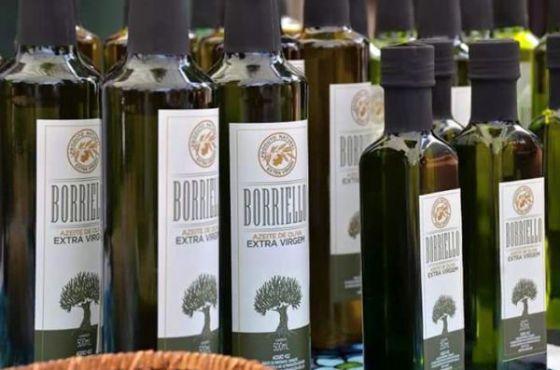 azeite-de-oliva-produzido-em-andradas-vira-destaque-nacional-g-03112015-095438.jpg